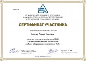 abok_certificate_2_webinar